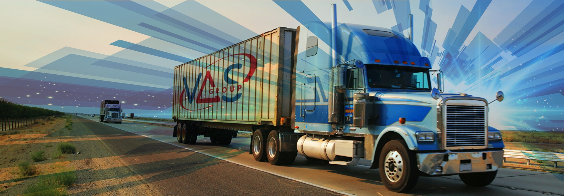Import & distribution