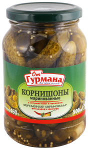 Pickled gherkins with hot chili and garlic 500 ml
